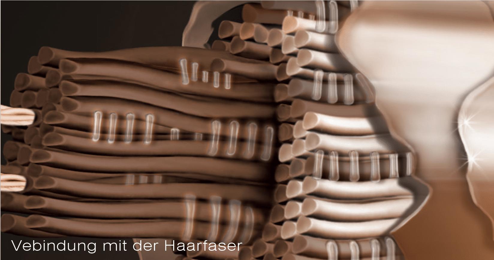 Verbindung mit der Haarfaser