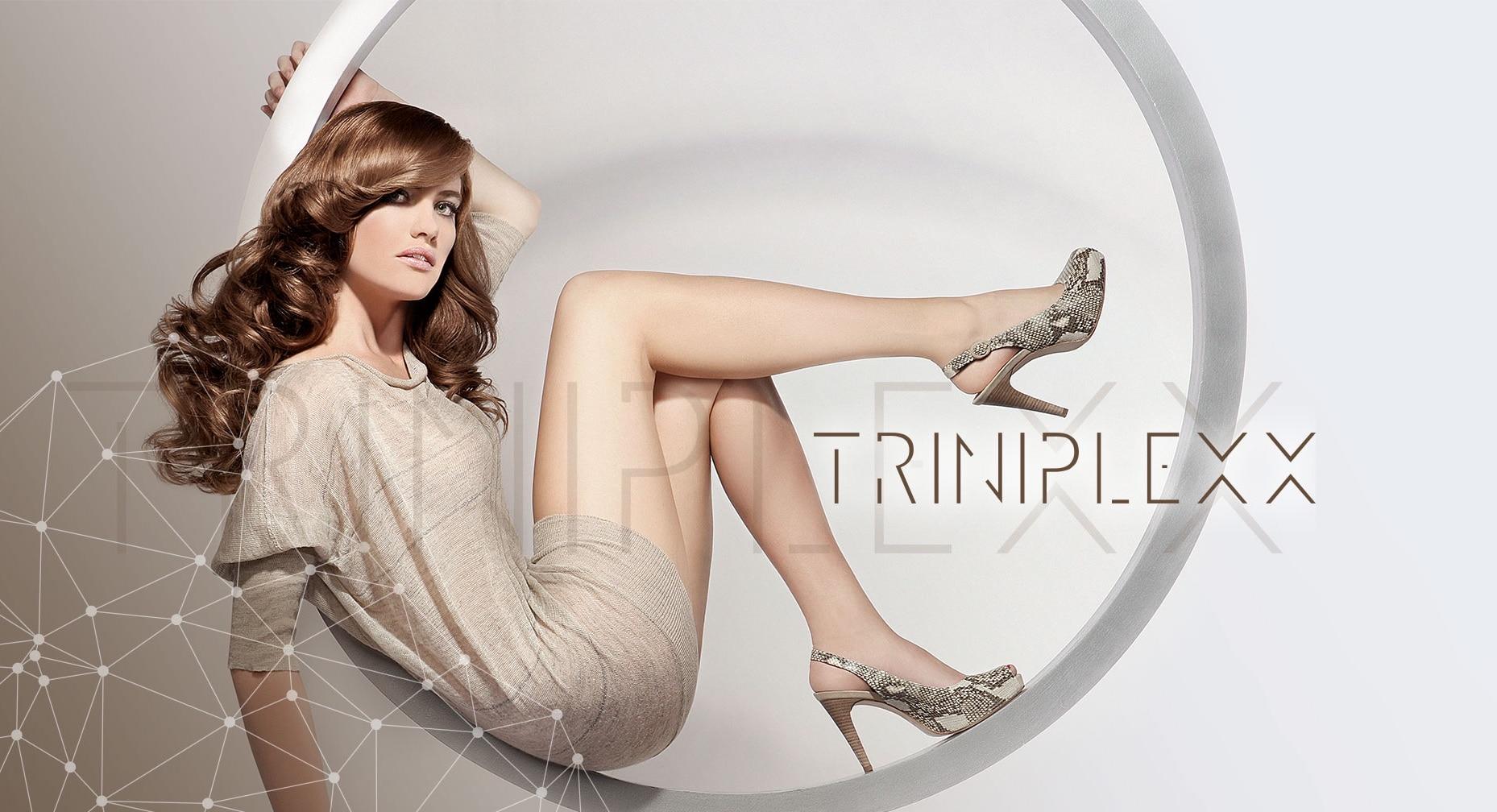 Darstellung Modell mit Triniplexx